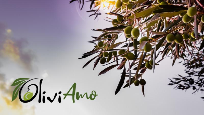 OLIVICOLTURA INNOVATIVA 4.0.  AL VIA LA CAMPAGNA DI EQUITY CROWDFUNDING A SOSTEGNO DEL PROGETTO OLIVIAMO E DELL'ECCELLENZA MADE IN ITALY
