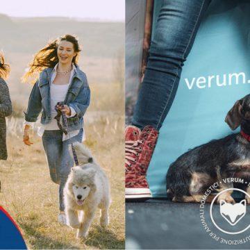MeetMyPet e Verum si alleano per conquistare i cani italiani